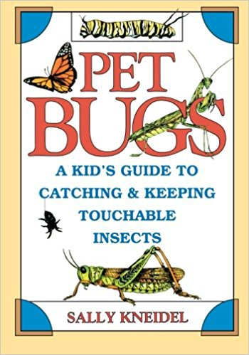 Pet Bugs book cover.